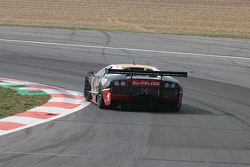 #40 Marc VDS Racing Ford GT Matech: Bas Leinders, Marc Hennerici