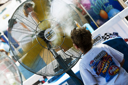 A fan tries to cool off