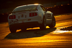#22 Starworks Motorsport Mustang Boss 302R: Ryan Dalziel, Enzo Potolicchio