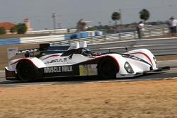#5 Muscle Milk Pickett Racing Oreca FLM09: Michael Guasch, Memo Gidley