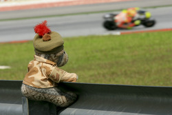 Teddy Bear and Valentino Rossi, Ducati Marlboro Team
