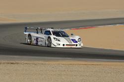 #5 Action Express Racing Chevrolet Corvette DP: Terry Borcheller, Paul Tracy, David Donohue