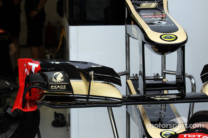 Lotus F1 voorvleugel
