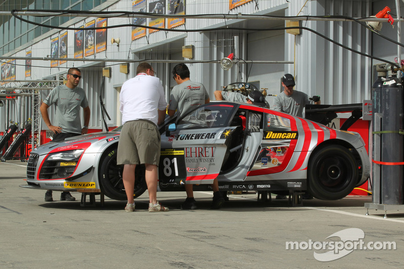 #81 DragonSpeed Audi R8 LMS Ultra: Peter Aronson, Enzo Potolicchio, Pierre Ehret, Hideki Onda, Eric Lux
