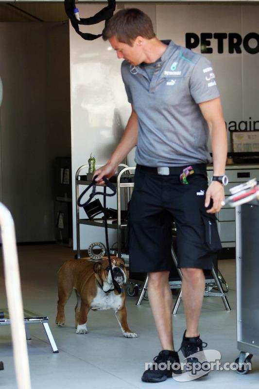 Roscoe, cachorro de Lewis Hamilton, Mercedes AMG F1, com a Mercedes AMG F1 mecânico