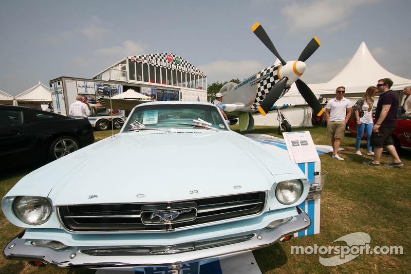 Twee Mustangs