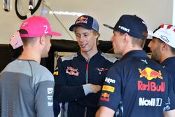 Стоффель Вандорн, McLaren, Брендон Хартли, Scuderia Toro Rosso, Макс Ферстаппен и Даниэль Риккардо, Red Bull Racing