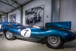 Jaguar D Type 1958
