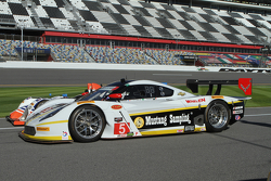 #5 Action Express Racing, Corvette DP