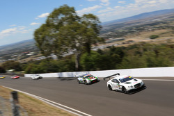 #8 Flying B Motorsport,宾利大陆GT3: Peter Edwards, John Bowe, David Brabham
