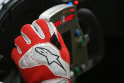 Glove of Frank Biela