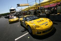 Les voitures Corvette Racing Corvette C6-R sur le point de quitter la grille de départ