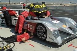 #2 Audi Sport North America Audi R10 TDI being prepared for qualifying