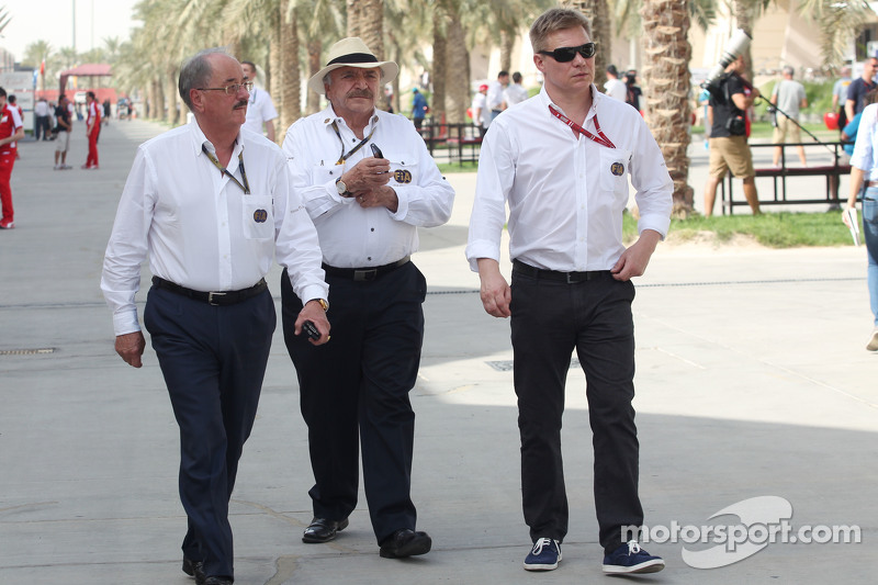 Mika Salo, FIA Delegesi