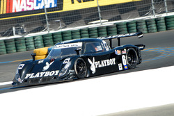 #6 Playboy Racing/ Mears Lexus Riley: Brian Frisselle, Mike Borkowski
