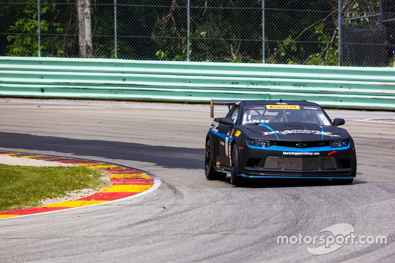 #11 Blackdog Speed Shop Chevrolet Z28: Tony Gaples