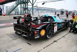 #1 Vitaphone Racing Team Maserati MC 12: Michael Bartels, Andrea Bertolini