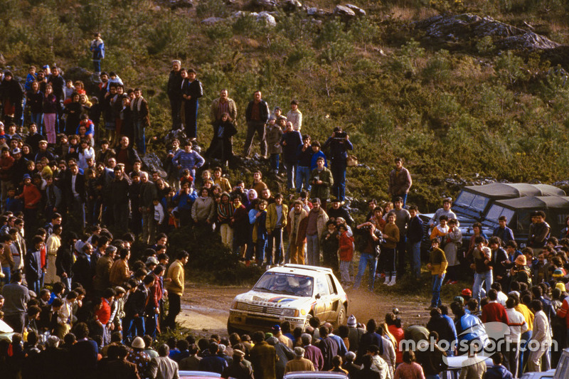 Ari Vatanen and Terry Harryman, Peugeot 205 T17