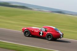 Tourist Trophy practice: 63 AC Cobra Le Mans coupe
