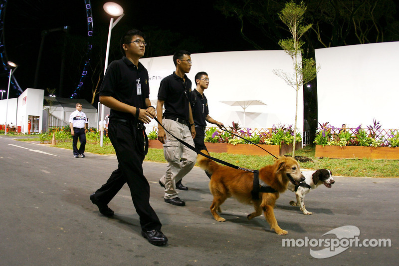 Security in the paddock