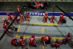 Scuderia Ferrari pit crew and Sebastian Vettel, Scuderia Toro Rosso
