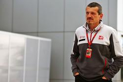 Guenther Steiner, Haas F1 Team Prinicipa