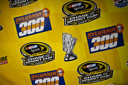 Background for the Sylvania 300