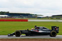 Стоффель Вандорн, тест-пилот McLaren MP4-31