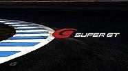 SuperGT 2014 Series Highlights