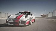 Webber et Porsche contre le portable au volant