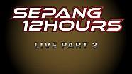 Re-LIVE 2105 SEPANG 12hrs - Malaysia - Part 3...