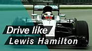 EXPLAINED: How to Drive Like a World Champion, with Lewis Hamilton