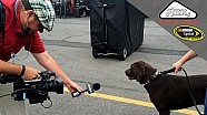 NSCS GarageCam goes dog wild in Pocono