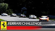 Ferrari Challenge North America - Highlights from Lime Rock