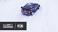 Rallye Schweden: Highlights, WP 16-17