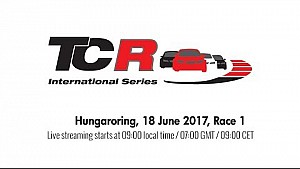 2017 Hungaroring, TCR raund 11