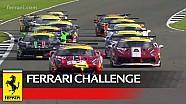 Ferrari Challenge Europe - Silverstone 2017, Coppa Shell, race 1