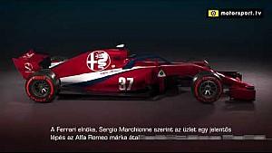 ALFA ROMEO F1 TEAM - SKIN F1 2018